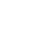 Richmond Handyman